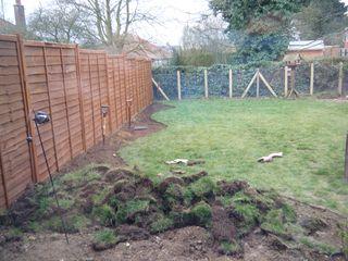 Digging (1)