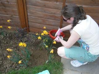 Seiving the soil