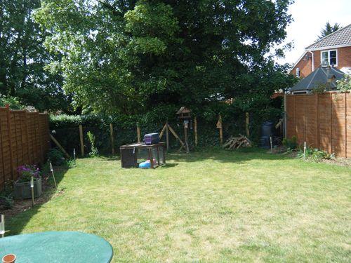 Garden summer 2011 (3)