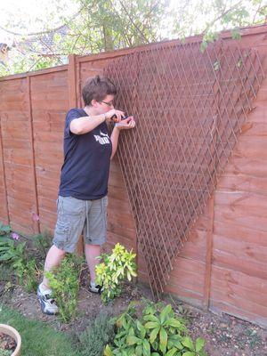 Garden improvements (1)
