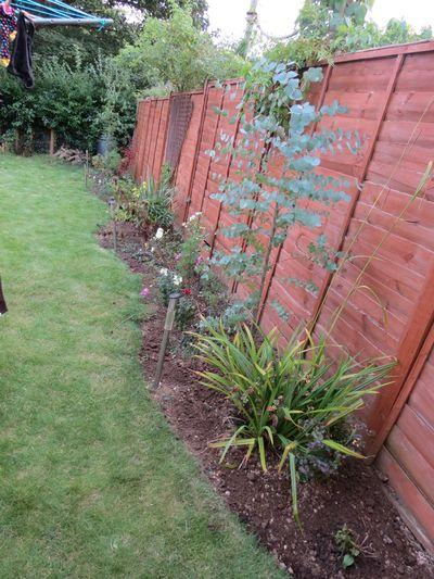Garden improvements (15)
