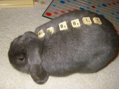 10 Putnum playing scrabble