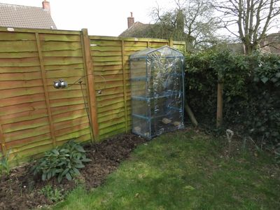 Springtime - plastic greenhouse