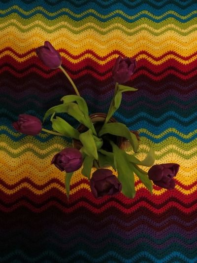 Ripple blanket and tulips (3) (600x800)