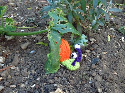 Crochet snail (2) (800x600)