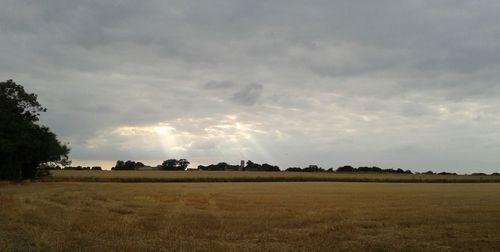 A weekend in Norfolk (2) (800x403)