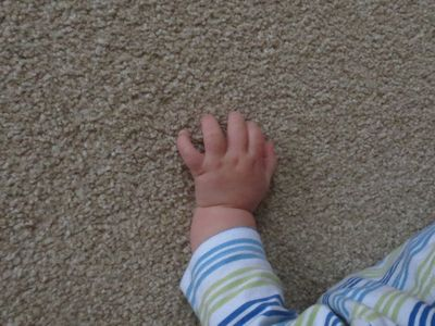 These little hands.. (3)