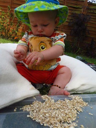 Sensory play - oats! (2) (600x800)