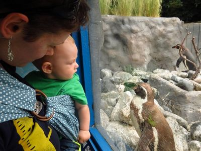 Baby R's first zoo trip (3)