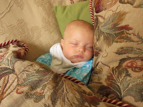 Baby O 365 - 082