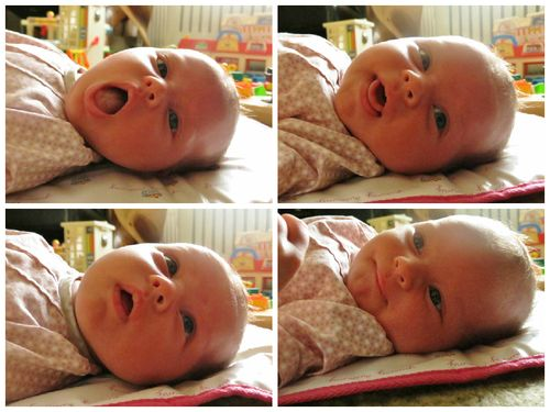 Baby O 365 - 032 - collage